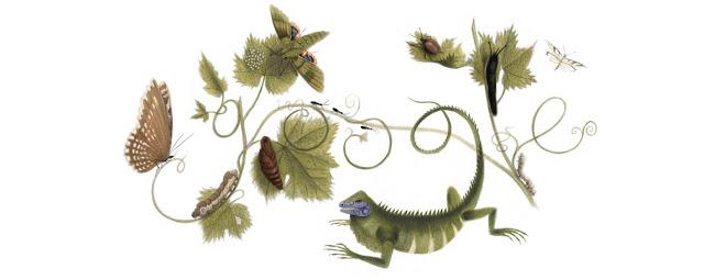 http://www.google.com/doodles/maria-sibylla-merians-366th-birthday
